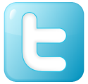 Twitter external data provider icon